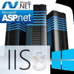 asp windows hosting